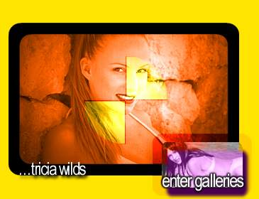 Clickable Image - Tricia Wilds
